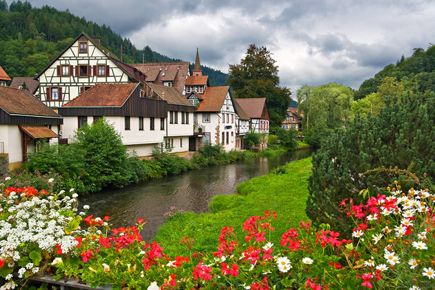The Black Forest جنگل سیاه